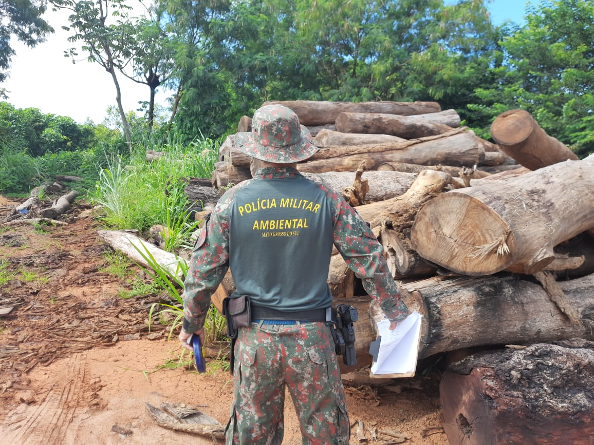 Sawmill in Costa Rica fined US$ 3,900 for illegal storage of logs including Ipê, Jatobá